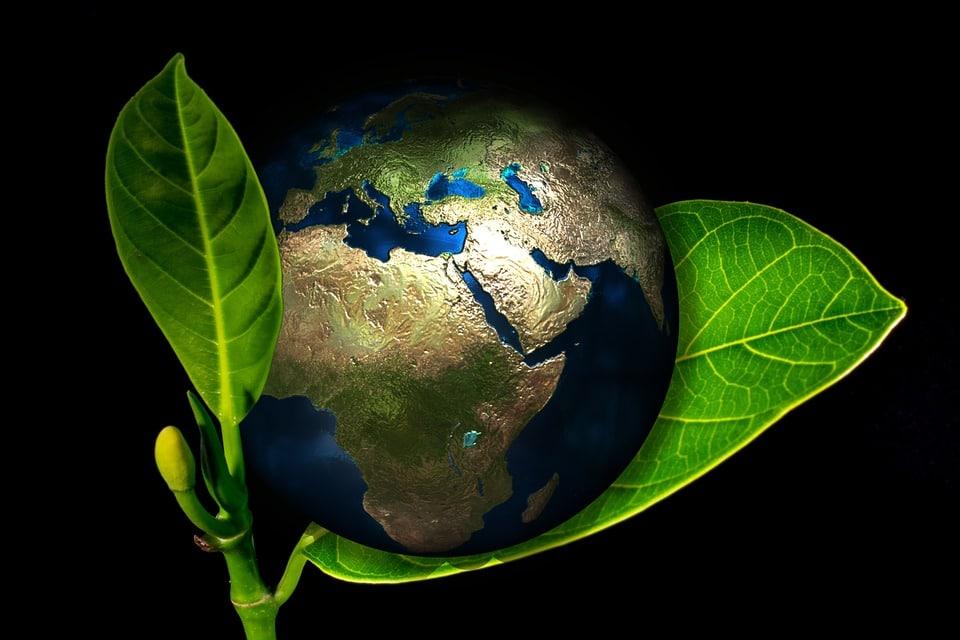 Paneles solares para salvar el planeta